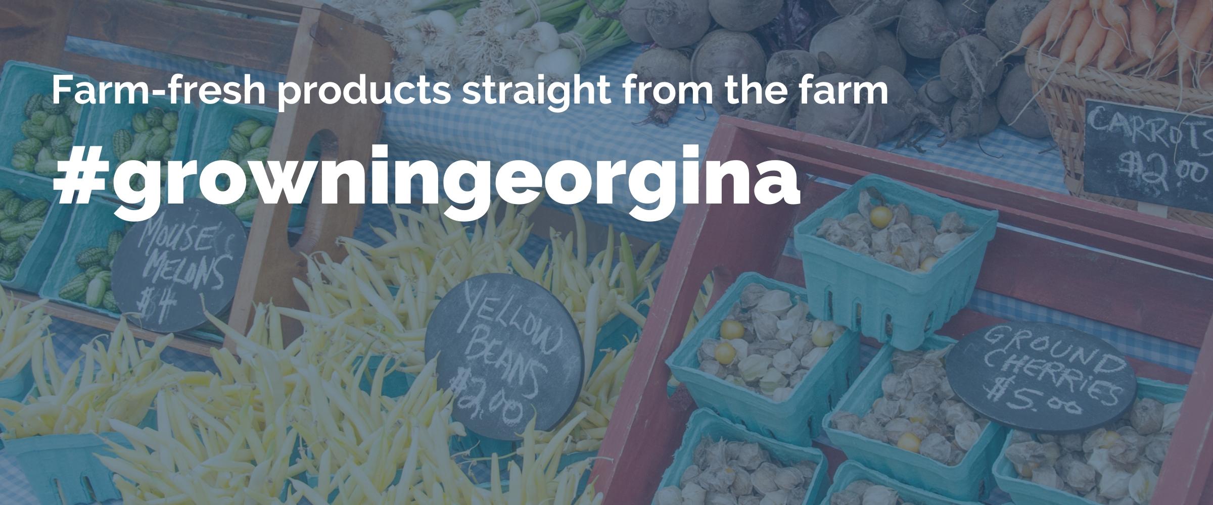 Farms in Georgina