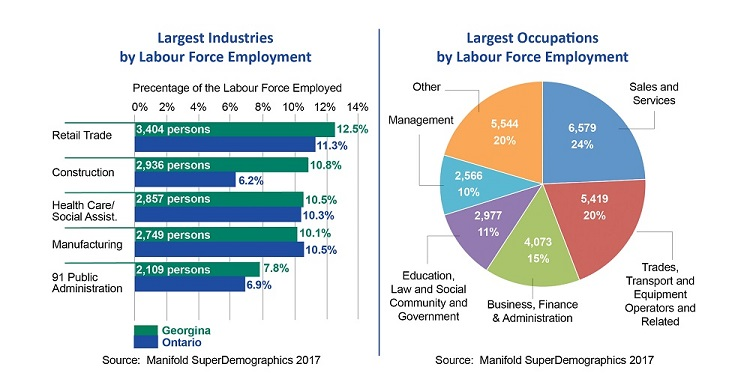 Labour Force Market