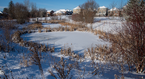 snow-covered stormwater management pond near a neighbourhood